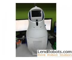 Matryoshka Robot for rent