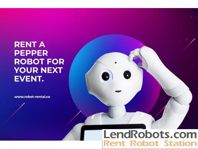 Pepper Robot for Rent