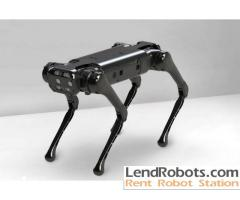 Robot rentals across Europe